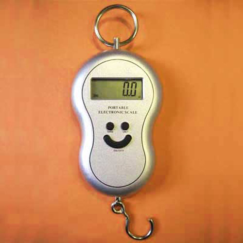 Portable Accurate Digital Scales to 40kg / 88lbs Load - Silver